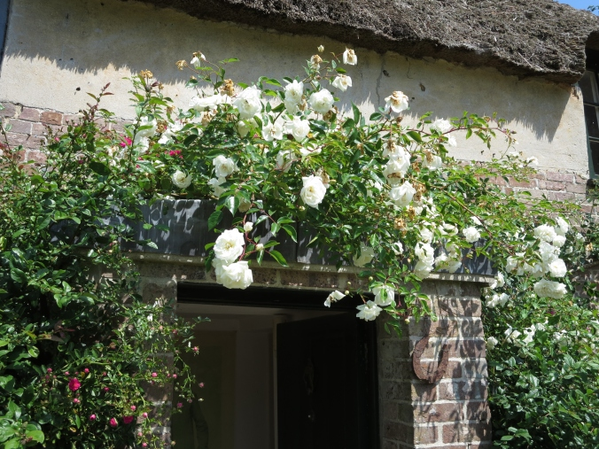 Roses over front door of Hardy's cottage