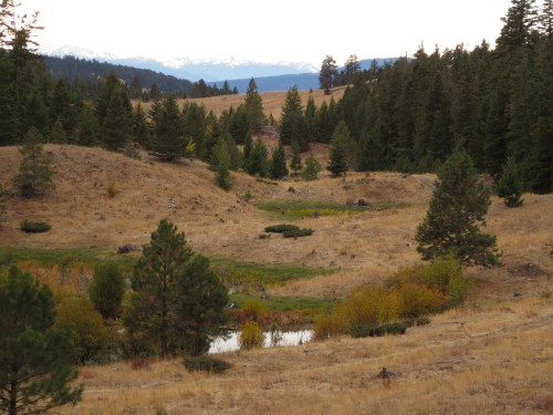 grassland and small lake, outside Merritt