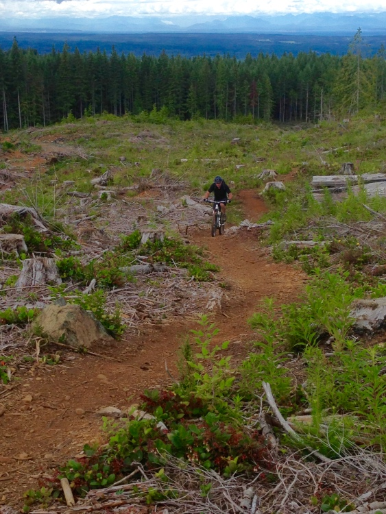 MTB trails, Cumberland, BC