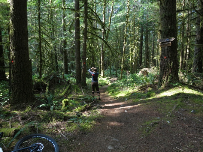 MTB trails, Powell River