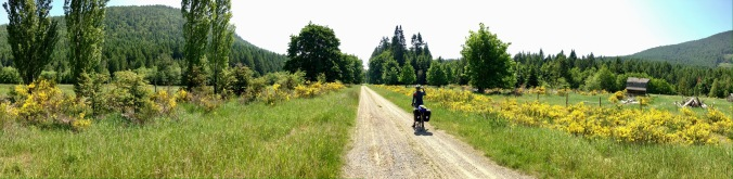 An open valley on the Cowichan Valley Trail, part of the Trans Canada Trail