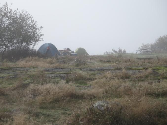 foggy campground
